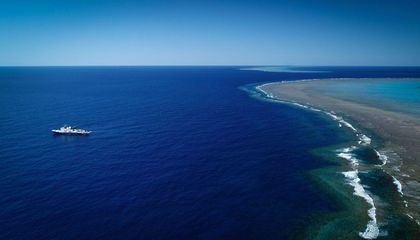 A Coral Reef Taller Than the Eiffel Tower Was Just Discovered Off the Coast of Australia