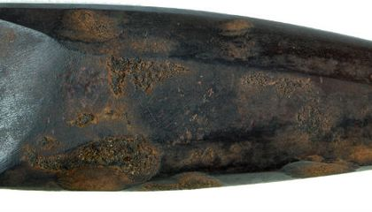 Europe's Oldest Polished Axe Found in Ireland