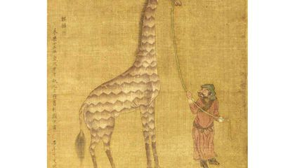 The Peculiar Story of Giraffes in 1400s China