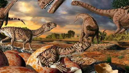 Paleontologists Uncover Oldest Known Dinosaur Nest Site