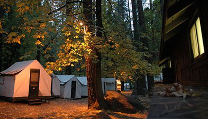 10,000 Yosemite Visitors May Have Been Exposed to Deadly Hantavirus