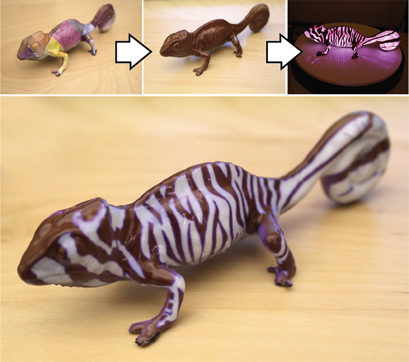 3_chameleon_process_overview (1).png