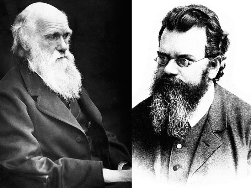 The Hidden Connections Between Darwin and the Physicist Who Championed Entropy