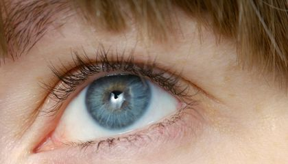 Determine Your Ideal Eyelash Length With Science