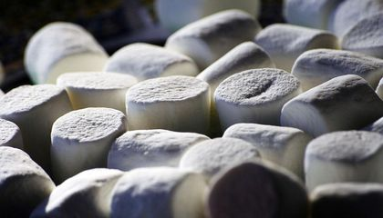 Why Delayed Gratification in the Marshmallow Test Doesn't Equal Success