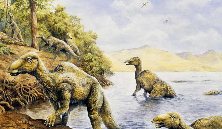 An Ode to the World's Most Average Dinosaurs