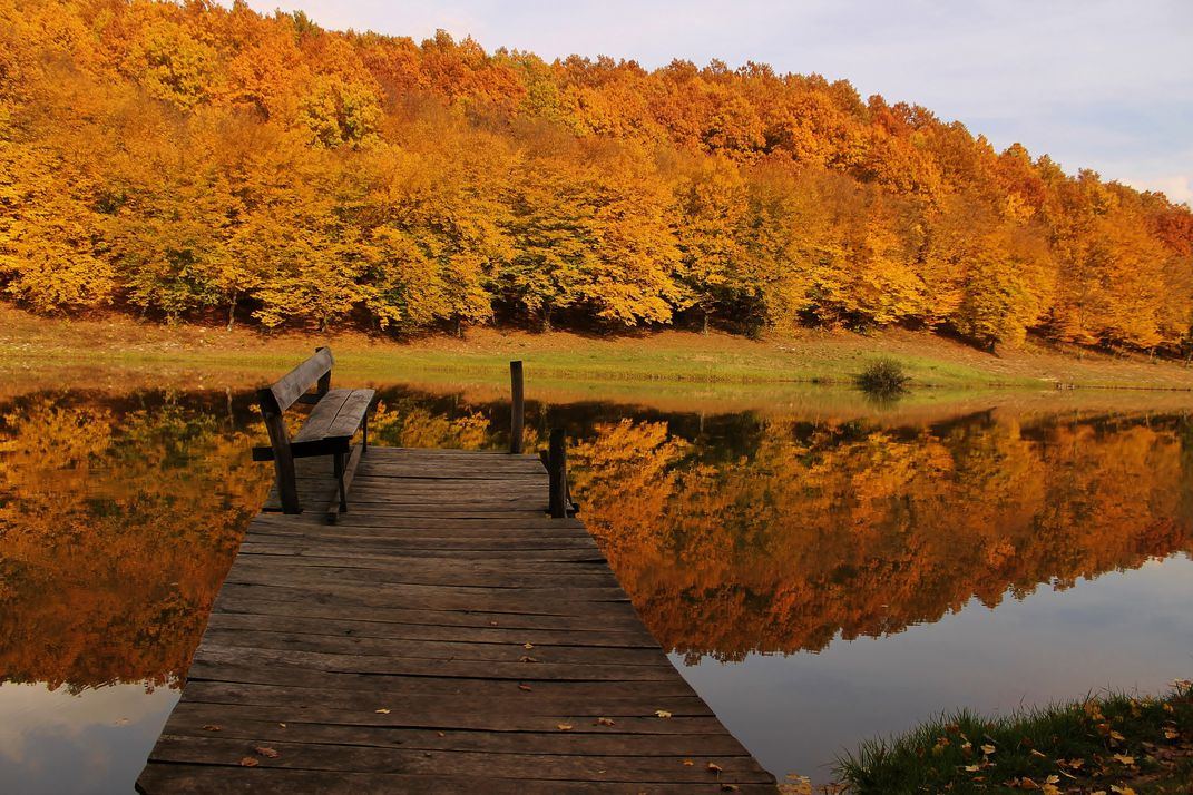 Best Autumn Photographs From The Last Ten Years Of Photo