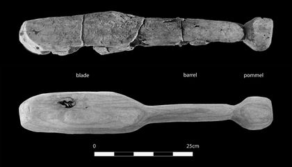 Researchers Whack Fake Skulls to Learn About Neolithic Weapons