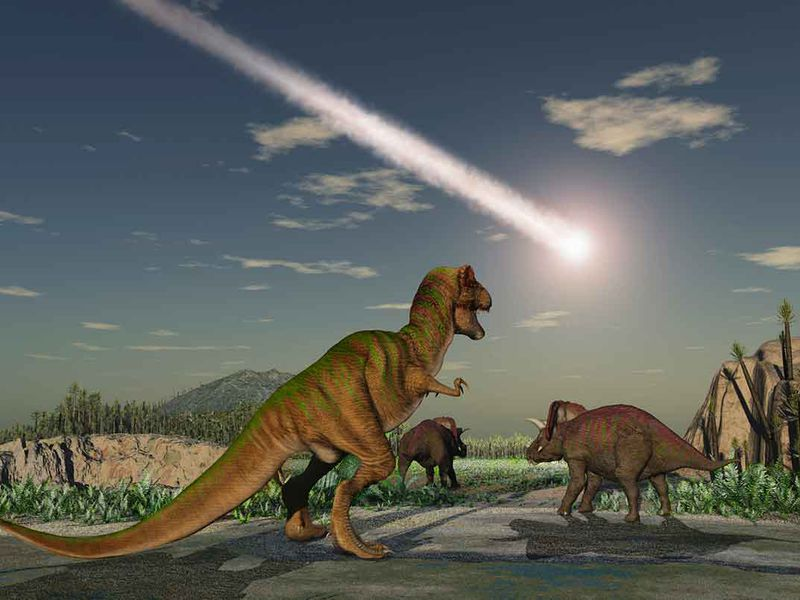 Dinosaurs and Astroid