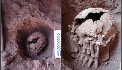 Scientists Discover 9,000-Year-Old Case of Decapitation in the Americas