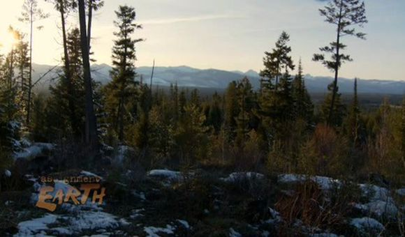 Preview thumbnail for video'Protecting Montana's Forests