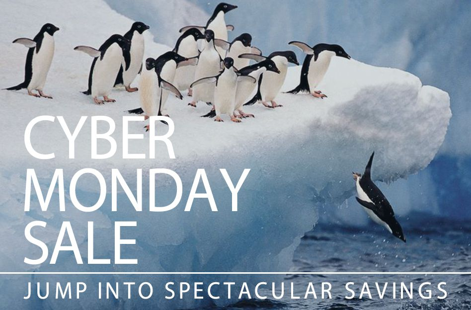 cyber monday promotional image