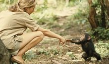 Turning Frustration into Fame: How Dr. Jane Goodall Conquered Challenges in the Field