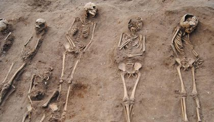 Mass Grave Shows the Black Death's 'Catastrophic' Impact in Rural England