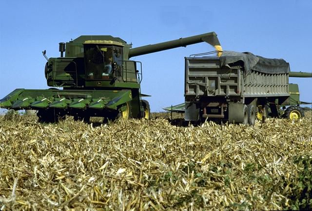 Corn is the main feedstock used for producing ethanol fuel in the United States.