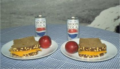 Thanksgiving on the Moon: A Lunar Feast