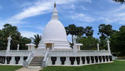 tailor-made-travel-sri-lanka