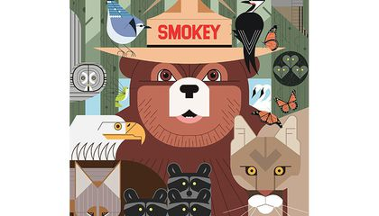 A Brief History of Smokey Bear, the Forest Service's Legendary Mascot