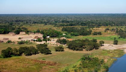 Protecting Land in Brazil Reduces Malaria and Other Diseases