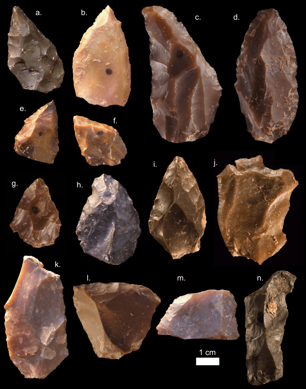 Some of the Middle Stone Age stone tools from Jebel Irhoud (Morocco)