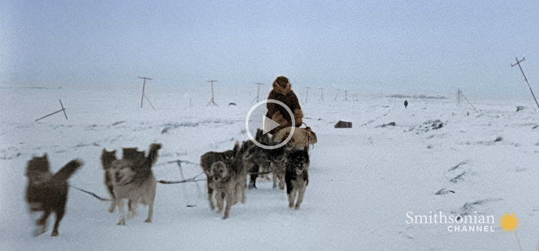 Caption: A 600-Mile Journey Across Alaska Saves the Town of Nome