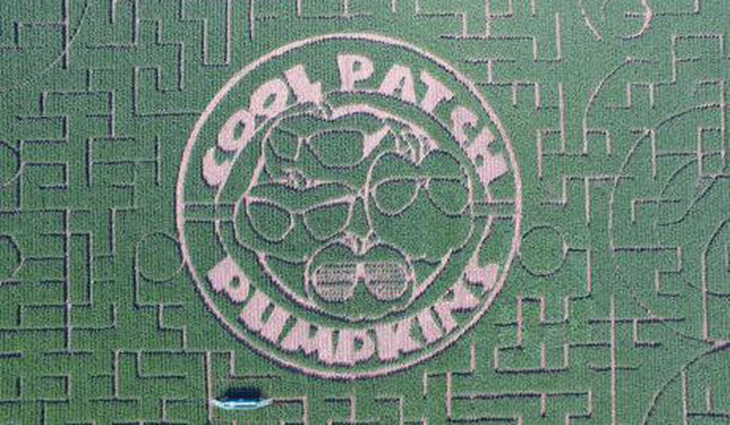 Cool Patch Pumpkins boasts the largest corn maze in the world at 63 acres.