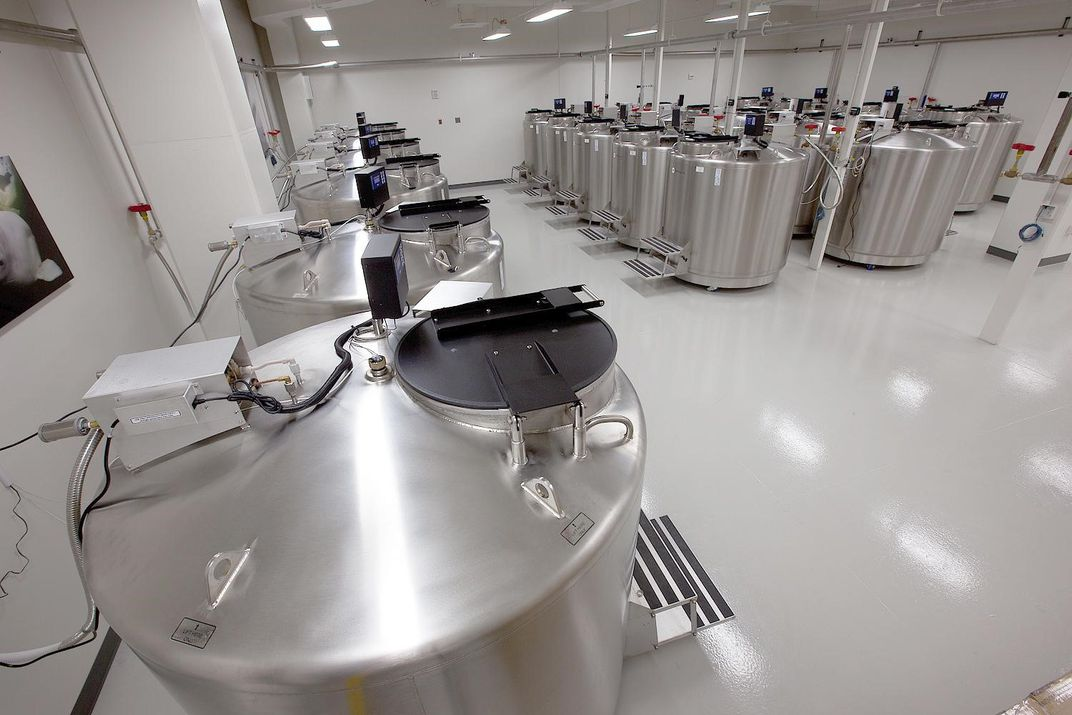 Stainless steel tanks in a laboratory.