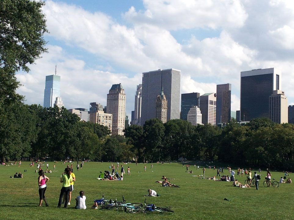 In The Original Mid 19th Century Design For Central Park 15 Acre Sheep Meadow Was Intended To Be An Open Space Where Military Could Execute Drills
