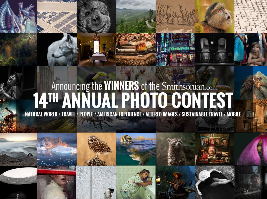 See The Winners And Finalists Of The Th Annual Smithsoniancom - 22 incredible finalists to the worlds largest photography competition