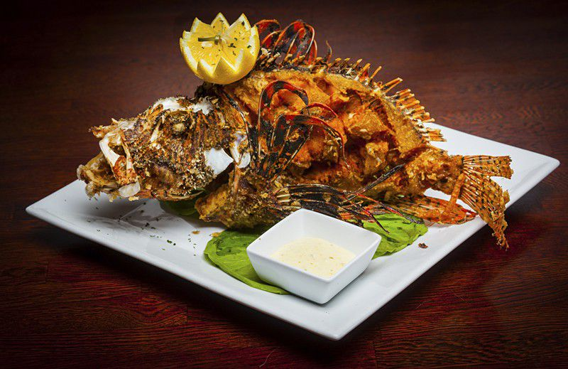 Eat an invasive species at your next meal travel for Fish store miami