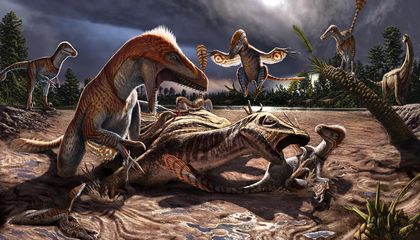 The Continuously Evolving Picture of the World's Largest Raptor