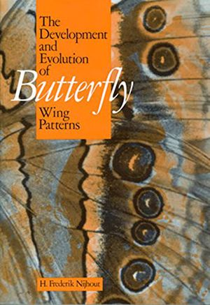 The Development and Evolution of Butterfly Wing Patterns photo