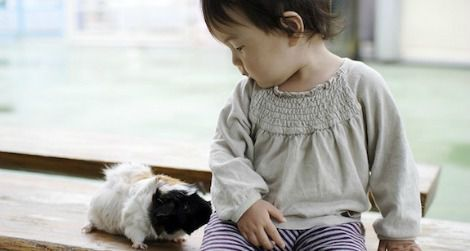 Pets Bring Kids With Autism Out Of >> Animals Can Help Kids With Autism More Than Toys Can Smart News