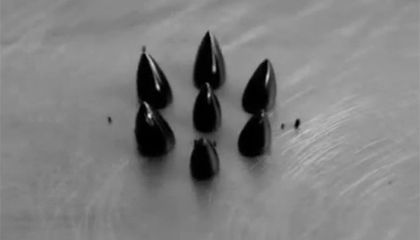 Watch This Blob of Ferrofluid Multiply Faster Than the Sorcerer's Apprentice's Broomstick