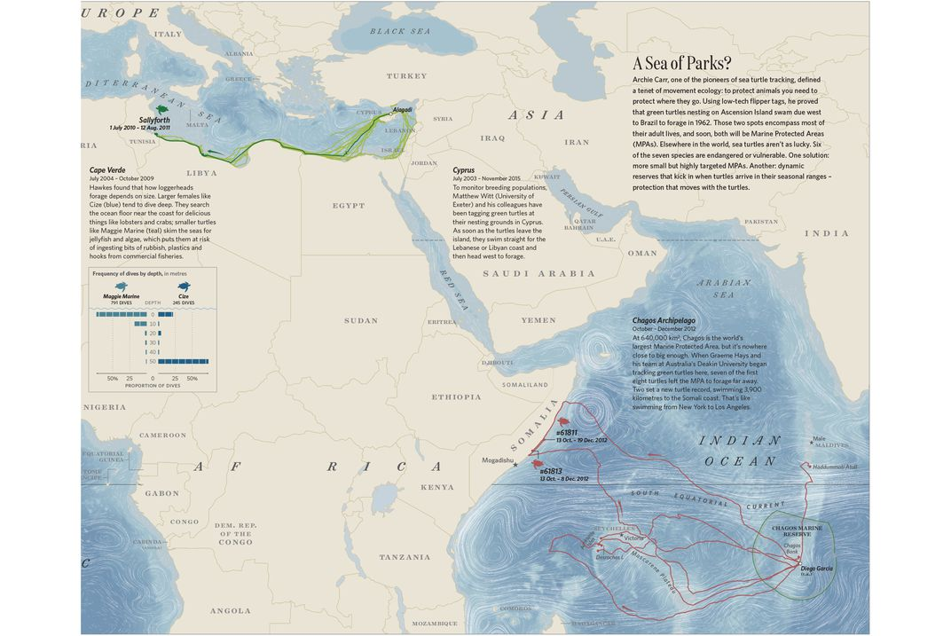 Explore the secret lives of animals with these marvelous maps this continuation of the map of sea turtles features the chagos marine protected areathe largest of these watery reserves but as cheshire and uberti write gumiabroncs Images