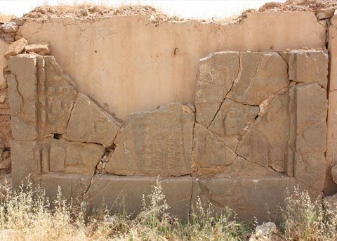 Nimrud Rescue Project image