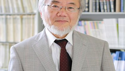 Japanese Scientist Wins Nobel Prize for Discovering How Cells Cannibalize Worn Out Parts