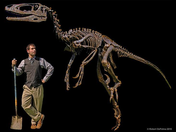 New Winged Dinosaur May Have Used Its Feathers to Pin Down Prey ... 37f22e31b5