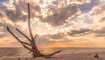 Why The Beaches of Fort Myers & Sanibel Is a Photographer's Paradise