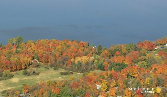 Preview thumbnail for video'Why Vermont Is the Best Place for Fall Foliage