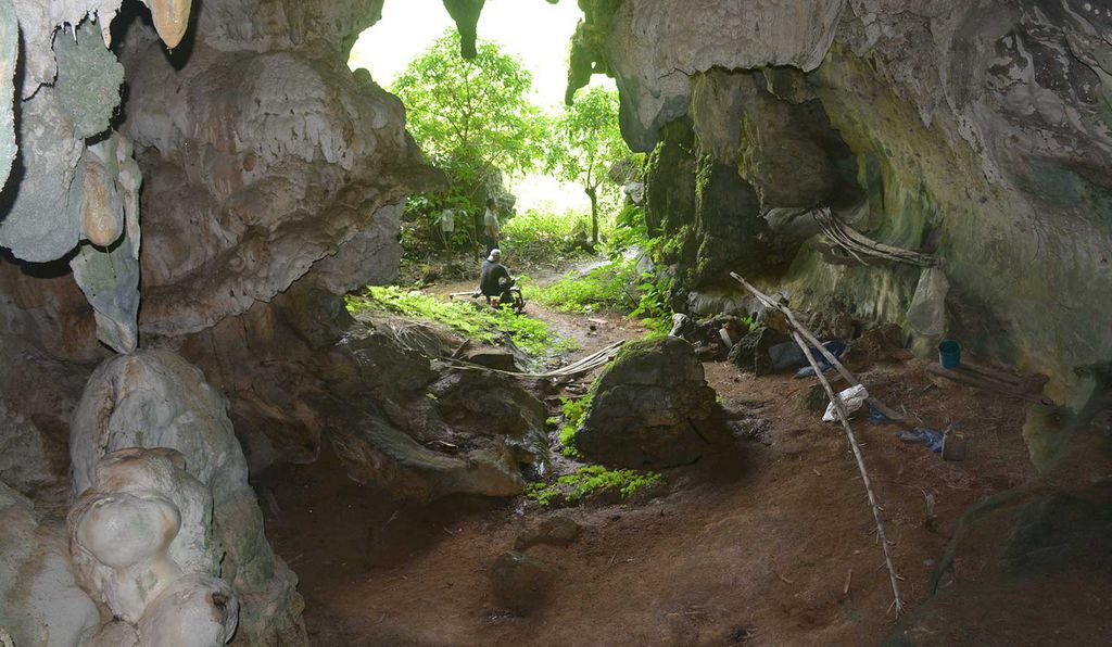 The mouth of Leang Tedongnge cave, where the pig painting was discovered