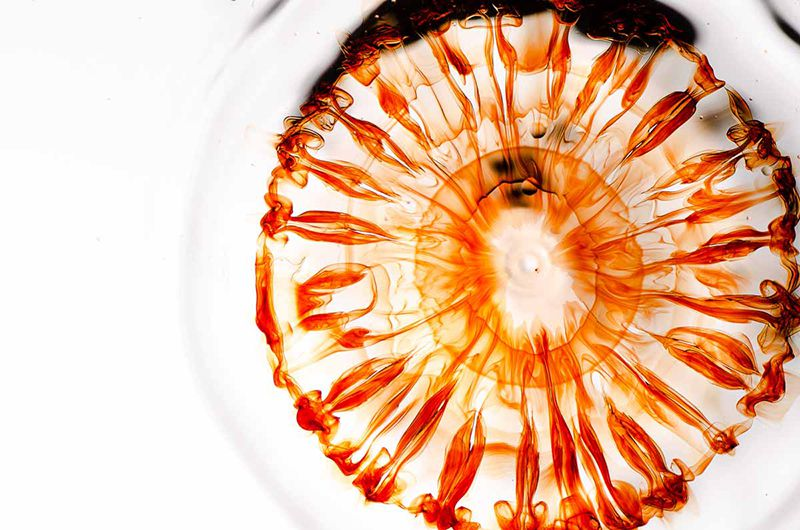 Time-Lapse Photos Reveal the Beauty of Metal Crystals ... Human Decomposition Time Lapse