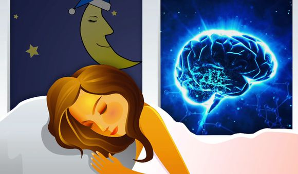 Preview thumbnail for video'Ask Smithsonian: Why Do We Sleep?