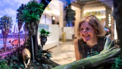 "Siobhan Starrs joined the ""David H. Koch Hall of Fossils – Deep Time"" team in 2009. She spent a decade working on the exhibit, which opened on June 8. (Smithsonian Institution)"