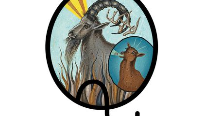 What's the Difference Between Horns and Antlers and More Questions From Our Readers