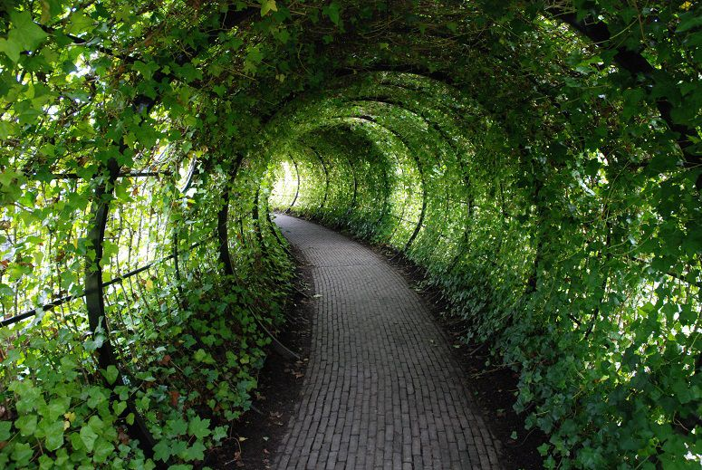 Step Inside the World's Most Dangerous Garden (If You Dare) | Travel