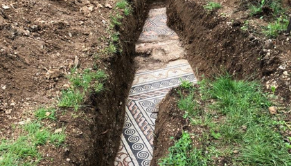 Ancient Roman Mosaic Floor Unearthed Beneath Italian Vineyard