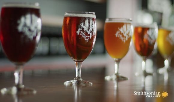 Preview thumbnail for video'Yeast, Wort, Hops and Everything Else in Your Beer