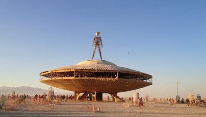 Burning Man is Currently Infested With Biting, Stinky Desert Bugs