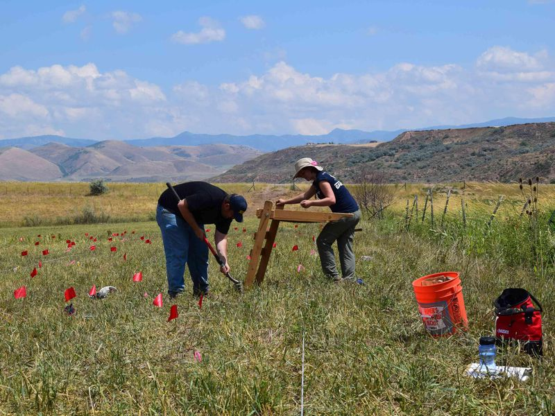 search for the remains of a massacre of Native Americans
